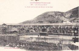 CPA  ARLES SUR TECH 66 - La Gare Des Câbles Des Mines De Batères - France