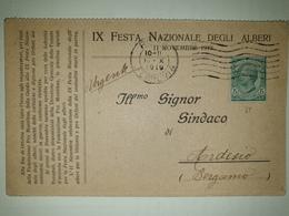CP277-Cartolina Pubblicitaria IX Festa Nazionale Degli Alberi 11 Novembre 1919 - Formato Doppio - 1900-44 Victor Emmanuel III