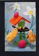 Fête Voeux  / Joyeuses,Heureuses Pâques / Poussins,oeufs - Pascua