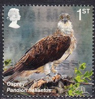 2018 GB     Reintroduced Species -  Osprey (Pandion Haliaetus)  1st  SG 4074Used - 1952-.... (Elizabeth II)
