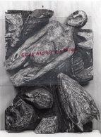 19 - MEYMAC- EXPOSITION PHILIPPE COGNEE PEINTRE GRAVEUR DESSINATEUR-NE A NANTES EN 1957--  RARE PHOTO ORIGINALE - Métiers