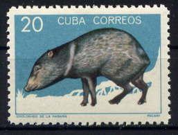 CUBA - 779** - PECARI - Kuba