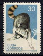 CUBA - 780** - RATON LAVEUR - Cuba