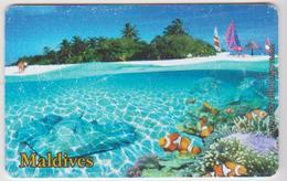 MALDIVES - STINGRAY - FISH - Maldives