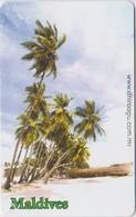 MALDIVES - PALM TREE - Maldiven