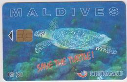 MALDIVES - TURTLE - 227MLDG - Maldives