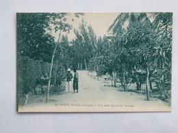 C. P. A. : Senegal : SAINT LOUIS : Une Allée Du Jardin D'essais, Animé - Senegal