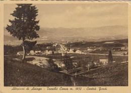 ASIAGO-VICENZA-TRESCHè CONCA-CONTRà FONDI-CARTOLINA VERA FOTOGRAFIA  VIAGGIATA IL 13.-8-1954 - Vicenza