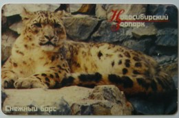 RUSSIA / USSR - Novosibirsk - 300u - Zoo - Snow Leopard - Embossed Control - OAO - Chip - Used - Russie