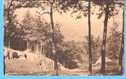 Orroir-Mont-de-L'Enclus(Hainaut)-Kluisberg+/-1930-Vue Du Trou De L'Enfer-Het Put Zicht-Photo Albert, Orroir Mont De L'E. - Mont-de-l'Enclus