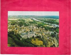 CADILLAC SUR GARONNE - 33 - Vue D'Ensemble  Le Chateau Du Duc D'Epernon - DELC5/SAL1 - - Cadillac