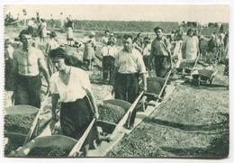 Highway Work Action, ORA - Zagreb Croatia / Yugoslavia Communism 1950s, Old PC - Croatia