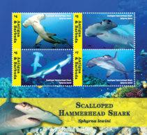 Antigua And Barbuda  2018  Scalloped Hammerhead Shark   I201901 - Antigua And Barbuda (1981-...)