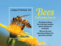 Antigua And Barbuda  2018 Fauna  Bees Pollinating Insects  I201901 - Antigua Y Barbuda (1981-...)
