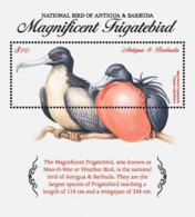 Antigua And Barbuda  2018  Magnificent Frigatebird  , National Birds  I201901 - Antigua And Barbuda (1981-...)