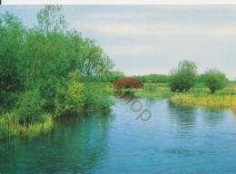 Biesbosch - De Sloot Van St.Jan [AA42-3.033 - Niederlande