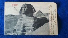 The Sphinx Egypt - Sfinge