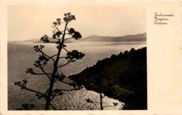 Dubrovnik - Ragusa, Trsteno * 14. 8. 1931 - Croatie