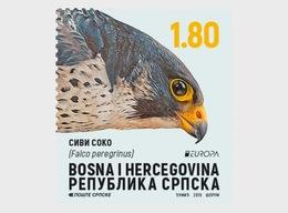 Bosnië & Herzegovina / Bosnia - Postfris/MNH - Complete Set Europa, Vogels 2019 - Bosnië En Herzegovina