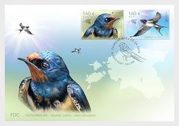 Estland / Estonia - Postfris/MNH - FDC Europa, Vogels 2019 - Estland
