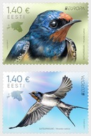 Estland / Estonia - Postfris/MNH - Complete Set Europa, Vogels 2019 - Estland