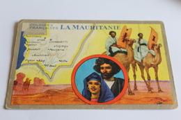 Colonies Francaises MAURITANIE  Edit Speciale Des Produits Lion  Noir - Mauritanie