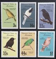 Micronesia  Birds - Micronesia