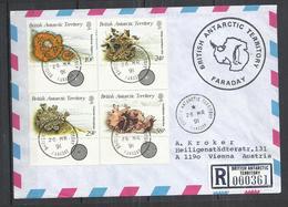 BRITISH ANTARCTIC TERRITORY 1989 - LICHENS - CPL. SET ON REGISTERED LETTER - OBLITERE USED GESTEMPELT - Plants