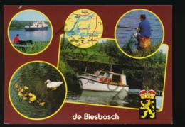 De Biesbosch [AA42-4.064 - Niederlande