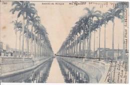 Brazil Rio De Janeiro Avenida Do Mangue Cartao Postal ( Ribeiro ) Vintage Original Postcard Cpa Ak (W_934) - Rio De Janeiro