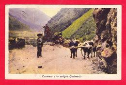 E-Guatemala-10Ph108  Carretera A La Antigua Guatemala, Attelage De Boeufs Cpa Colorisée - Guatemala