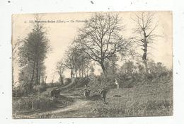 Cp,18 ,  MENETOU SALON ,  Un Paturâge,vaches,  Voyagée 1906 - France