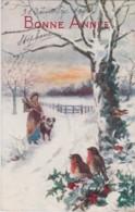 Bt - Cpa Illustrée Raphael Tuck (Oilette) - Bonne Année - Rencontre Dans La Neige (oiseaux ) (n° C1079) - Tuck, Raphael