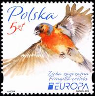 Poland 2019 Fi 4954 Mi 5104 EUROPA - 1944-.... República