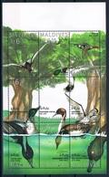 Bloc Sheet Oiseaux Canards Birds Ducks Neuf  MNH ** Maldives 1995 - Eenden
