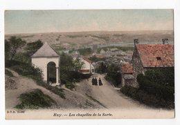 8 - HUY - Les Chapelles De La Sarte * Colorisée* *DVD 10066* - Huy