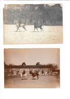 Lot De Photos Anciennes D'Algérie Militaria - War, Military