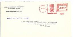 ITALIE EMA DE LA FAO DE ROME POUR LA FRANCE 1963 - Machine Stamps (ATM)