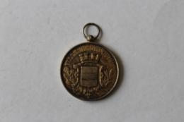 Medaille Pompier  Manoeuvre De Pompes à Incendie  Ville De Noyon 1886 - Firemen