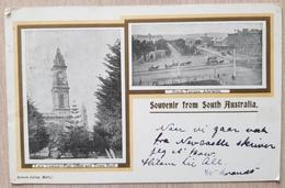 Australia Souvenir From South Australia 1903 Adelaide - Australia