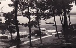 33. CLAQUEY. BASSIN D'ARCACHON.  LA PLAGE DU PORT VERSION PEU COURANTE. . ANNÉE 1957 - France
