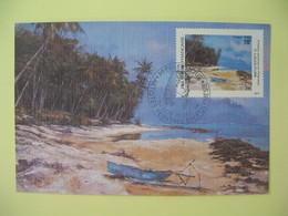 Carte Maximum 1994   Polynésie Française Papette  - Artistes Peintres En Polynésie P. Lacouture - Cartes-maximum