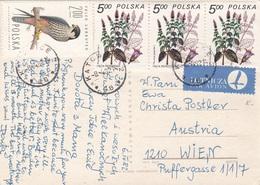 POLEN 1982 - 4 Sondermarken Auf Osterkarte Gel.v. Kato? > Wien - 1944-.... Republik