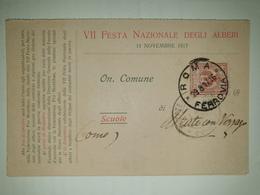 CP349-Cartolina Pubblicitaria Formato Doppio - VII Festa Nazionale Degli Alberi 11.11.1917 - Roma - 1900-44 Victor Emmanuel III