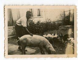 Homme Man Noir Black Cochon Pig Snapshot Amateur - Anonyme Personen