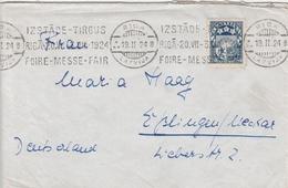 Lettonie Lettre Riga Pour L'Allemagne 1924 - Lettonie