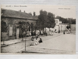 RARE. Algérie. Aflou. Maison Hernandez. Edition Hernandez - Algerije