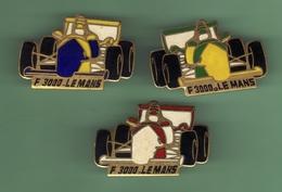 F3000 LE MANS *** Lot De 3 Pin's Differents *** Signe EMC *** 1002 - Car Racing - F1