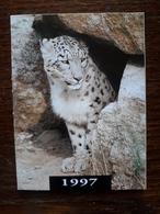 L20/29 Mini Calendrier Publicitaire. 1997. Léopard. Albi. Bijoutier Horloger. Sabatier - Grand Format : 1991-00