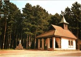 CPM 54 Vandoeuvre-lès-Nancy - 1ère Chapelle élévée En France En L'honneur De Notre-Dame Vierge Des Pauvres TBE - Vandoeuvre Les Nancy